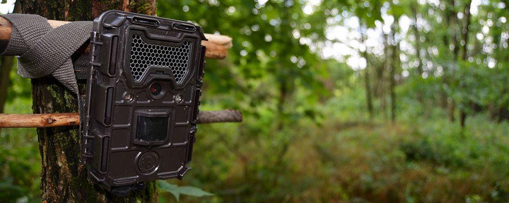 caméra de chasse Campark