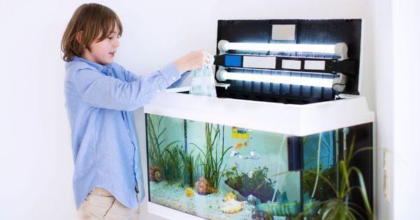 Quelle pompe pour aquarium 120 litres